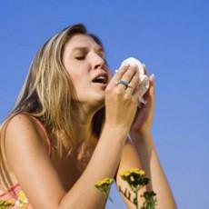 растения вызывающие аллергию