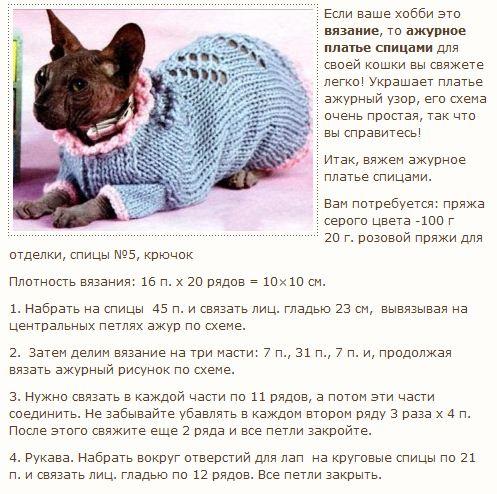 Вязание для кошек сфинкс схемы 64