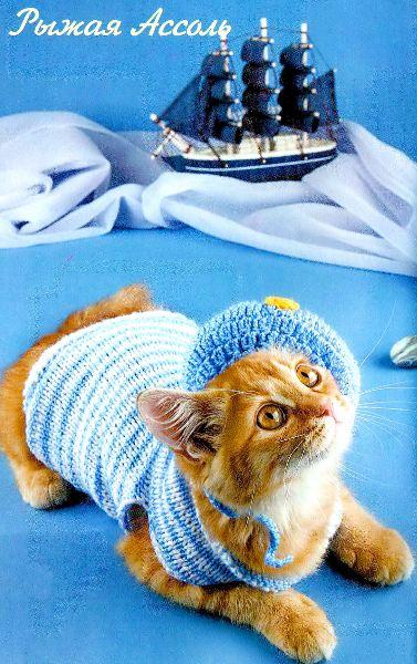 Вязание для кошек крючком