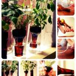 Идея огорода на окне