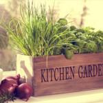 8 магазинных овощей, которые можно потом выращивать самой.