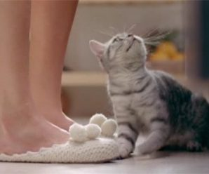 Вязаные тапочки из рекламы Вискас, мастер-класс по вязанию